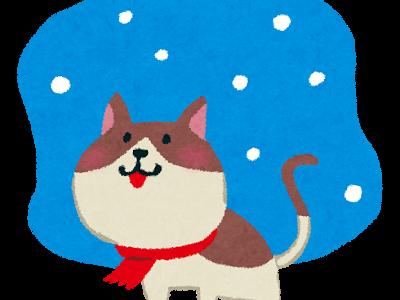 平成で一番寒い冬…。